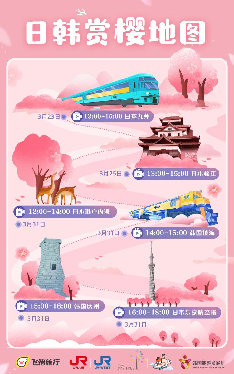 飛豬在日本的九州、松江、瀨戶內海和東京晴空塔直播櫻花盛景,而在韓國,則會帶用戶前往鎮海和慶州,欣賞經典韓劇的櫻花取景點。