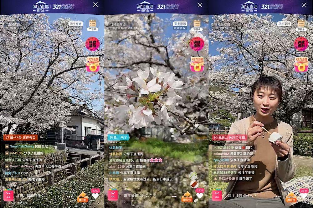 3月23日下午,日本九州舉辦第一場直播活動,展現櫻花盛放的美景,直播主持人還試吃了當地的特色點心。
