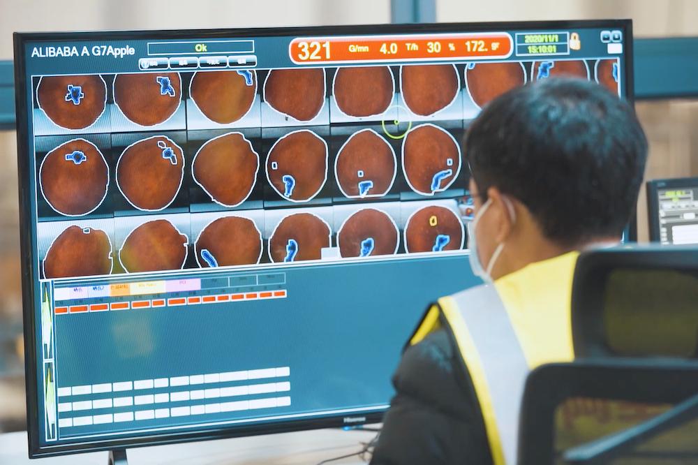 西安產地倉的數字化分選設備可以將蘋果裡面和外表看得清清楚楚,短短6秒就可以輕鬆篩走霉心蘋果。