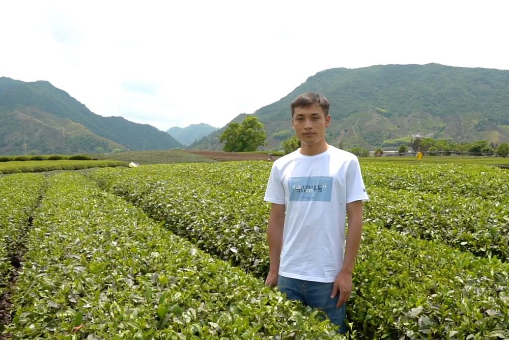 地元産のお茶を全国ブランドへ、若手ネットショップ店主の起業ストーリー